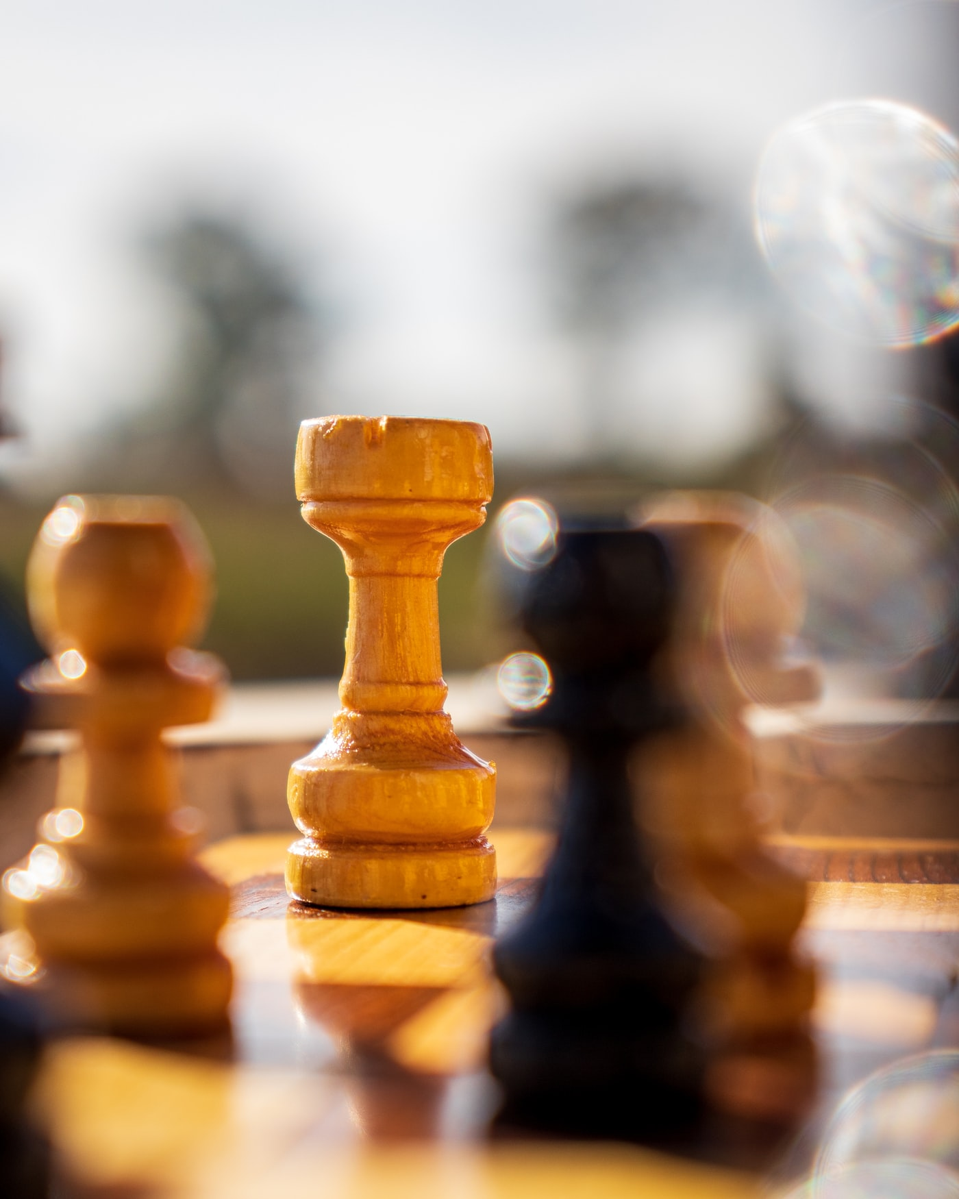 Chess board with the king in focus